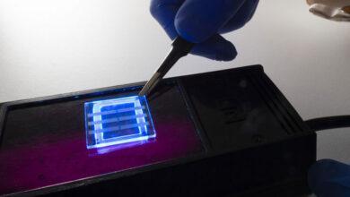 Фото Австралийские учёные научились делать OLED из человеческих волос