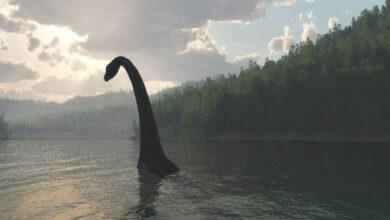 Фото В Интернете снова заговорили о Лох-Несском чудовище