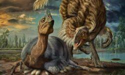 Важное открытие: яйца динозавров не были покрыты скорлупой