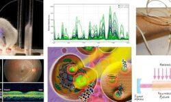 23 реинкарнации лазера, которые нас окружают в повседневной жизни