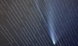 Фото дня: мини-спутники Илона Маска помешали наблюдению за кометой NEOWISE