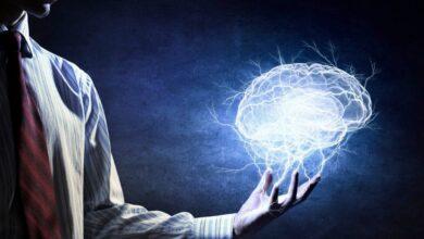 Фото Как знание нескольких языков влияет на головной мозг?