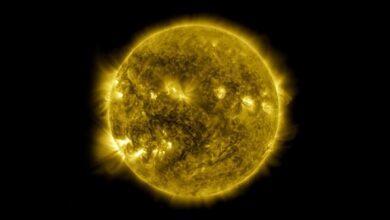 Фото NASA показало 10 лет из жизни Солнца на одном видео