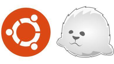 Photo of VPS на Linux с графическим интерфейсом: запускаем сервер X2Go на Ubuntu 18.04