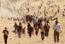 Photo of Изменение климата положило начало новому Великому переселению народов