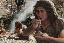 Photo of Как люди готовили еду до изобретения огня?