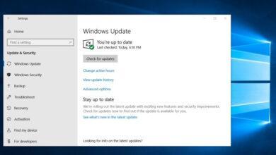 Фото Новая сборка Windows 10 (20H2) с большим количеством исправлений стала доступна инсайдерам