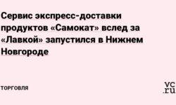 Сервис экспресс-доставки продуктов «Самокат» вслед за «Лавкой» запустился в Нижнем Новгороде