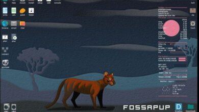 Фото Вышел Puppy Linux 9.5, дистрибутив для устаревших и слабых ПК и ноутбуков