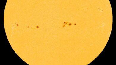 Фото Астрономы утверждают, что у Солнца «кризис среднего возраста». Но что это значит?