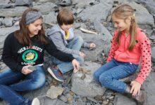 Фото Как 7-летний мальчик из России нашел останки древнего животного?