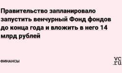 Правительство запланировало запустить венчурный Фонд фондов до конца года и вложить в него 14 млрд рублей