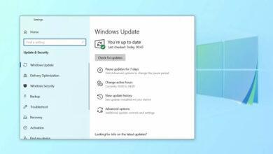 Фото Следующее крупное обновление Windows 10 скоро станет доступно инсайдерам