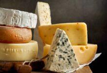 Фото Запах сыра: ароматическое взаимодействие бактерий и грибков